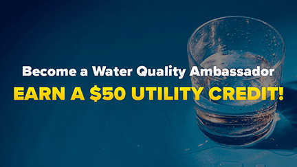 WaterQualityAmbassador-website