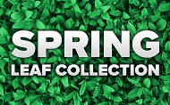 Spring Leaf Collection Website Graphic